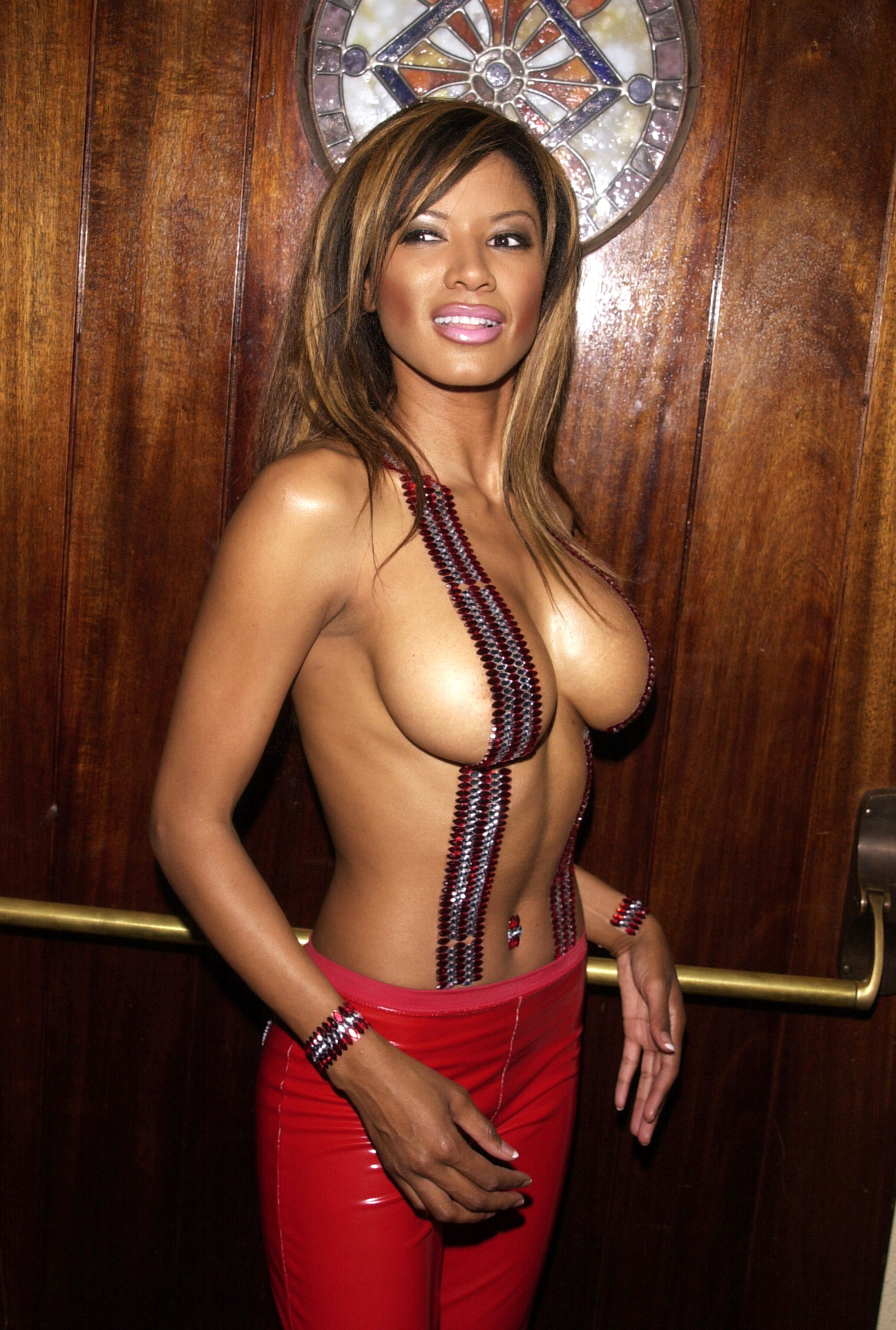 Traci bingham sexy paparazzi hots and naked scans